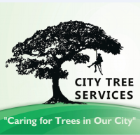 City tree service new.PNG